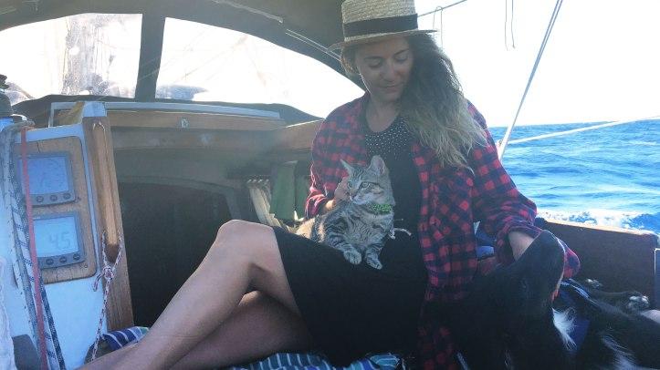 pets-sailing