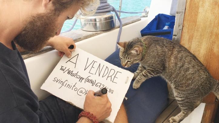 escribiendo_cartel_avendre_martinique_gato